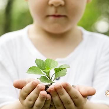 A importância de falar sobre a Amazônia para as crianças